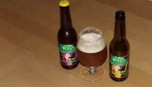 Mikkeller Single Hop Imperial IPA Citra and Nelson Sauvin