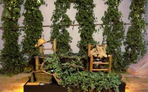 Hop harvest exhibition
