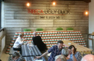 Tribeca Ugly Duck Beer & Pizza Lab