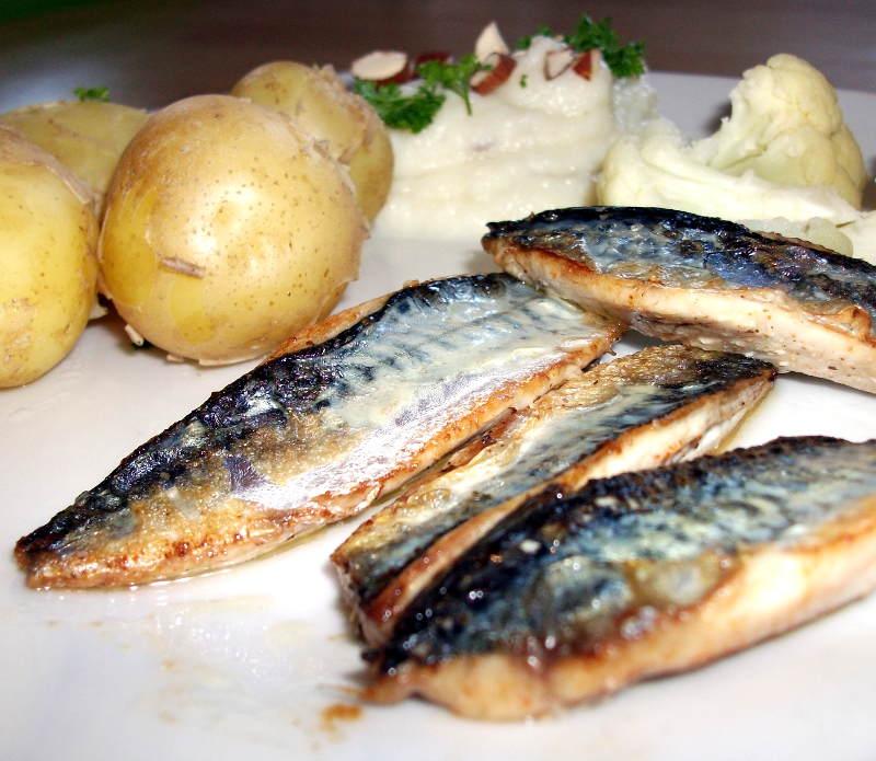Skindstegt makrel med nye kartofler og blomkål